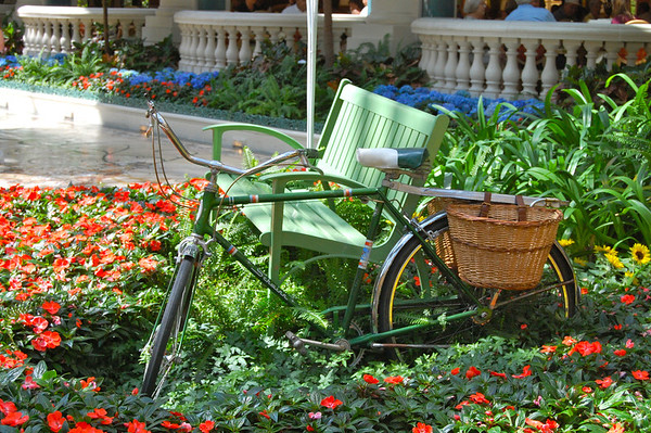 Bicycle and Bench