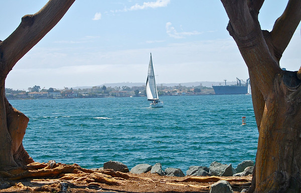 Sailboat, San Diego