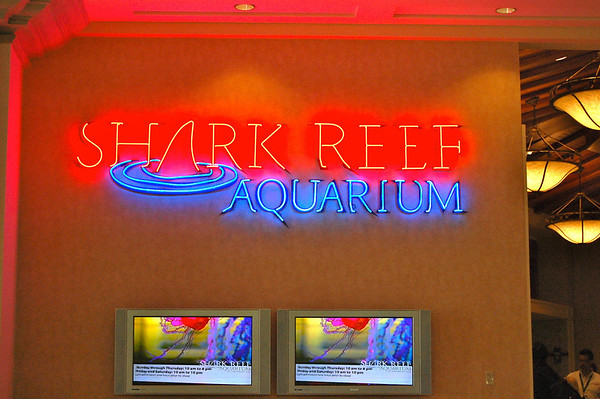 Shark Reef Sign