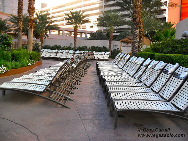 Rows of empty pool chairs