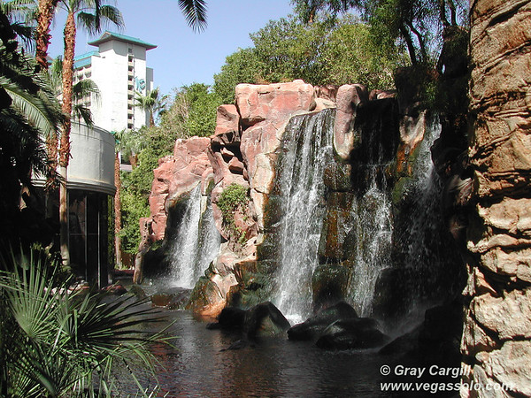 Waterfall at the Flamingo
